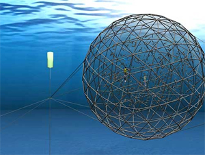 New design for submersible fish cage