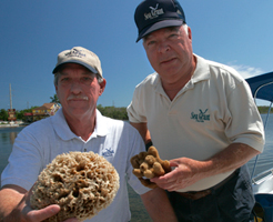 Sweat, working with sponge research colleague John Stevely (left), helped change how sponges are harvested commercially.