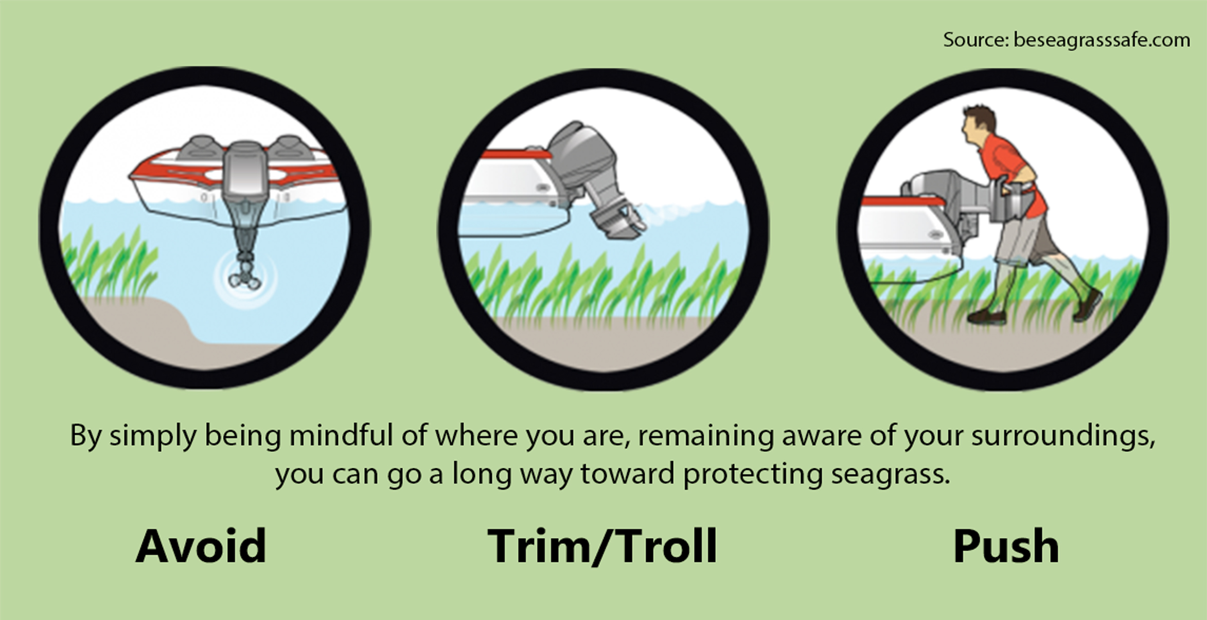 Be seagrass safe