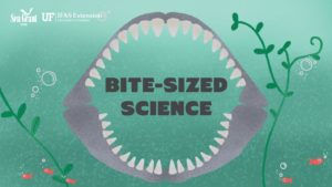 """Drawing of a shark's jaw and teeth around the words """"Bite-sized Science"""""""