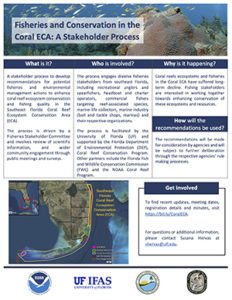 Fisheries and Conservation in the Coral ECA: A Stakeholder Process Fact Sheet