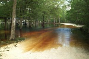 A flooded dirt road is seen in the area of the Santa Fe River in this file photo. A new link on the Florida Sea Grant website gives information to help you understand flood insurance, why it's important, whether you're required to have it and how to get it.
