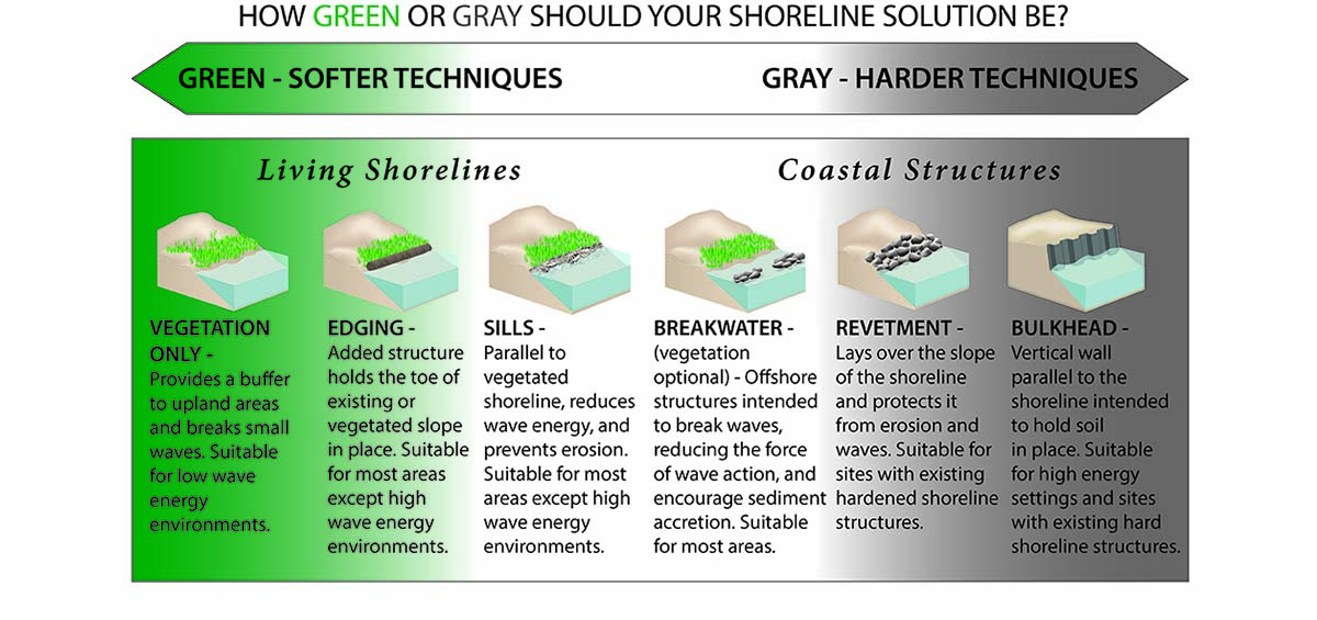 living shorelines how green or gray should your solution be
