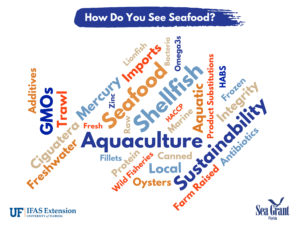 "Wordle in the shape of a fish. Multicolored words about fisheries under the title ""How do you see seafood?"""