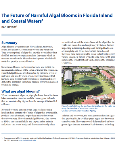 the future of harmful algae blooms in florida inland and coastal waters
