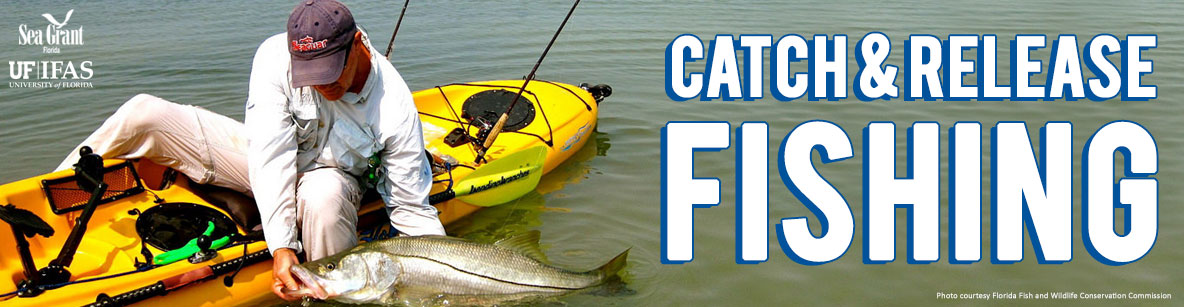 Catch and Release Fishing Banner Image