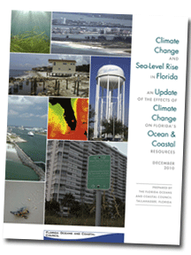 climate change and sea-level rise in florida book cover