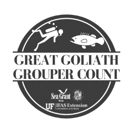 Great Goliath Grouper Count logo