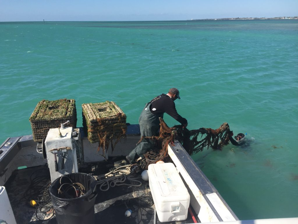 lobstermen collecting derelict traps in florida keys post hurricane irma