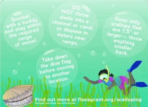 scalloping best practices postcard