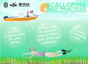 scalloping best practices post card