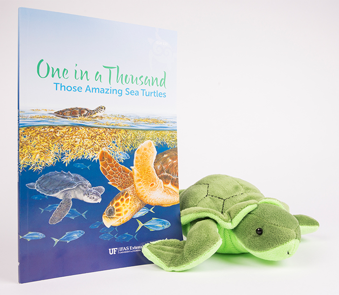 one in a thousand: those amazing sea turtles