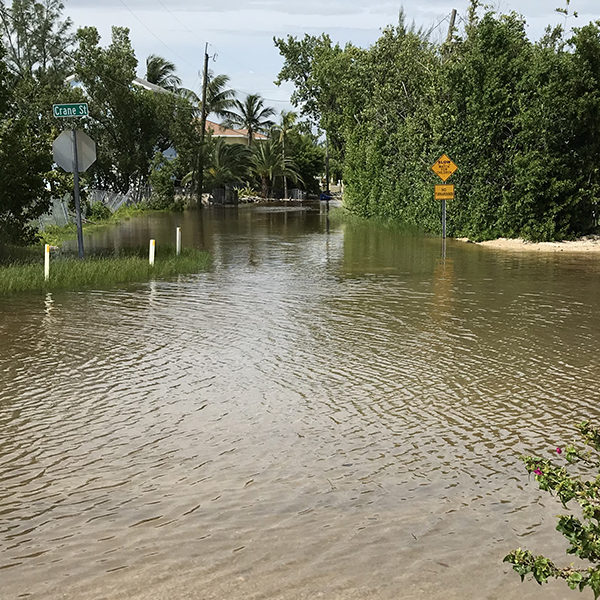 Flooding in 2019 at a Twin Lakes Subdivision in Key Largo